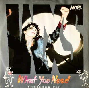 "INXS - What You Need (12"") (VG/VG)"
